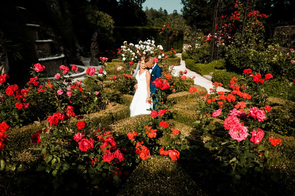Zdjęcia ślubne Książ 3