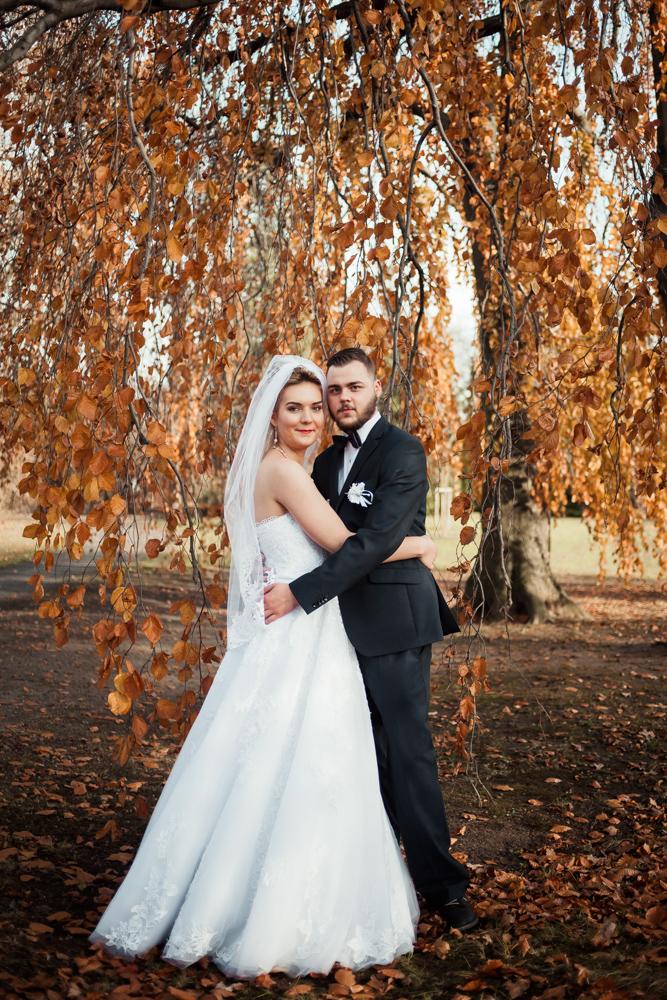 sesja ślubna wrocław 2